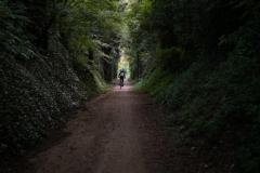 De door bossen en bomen omringde paden in de Garrotxaregio tussen Girona en Olot zijn een van de hoogtepunten van de rit. (2)