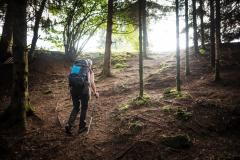 Hike Like a Giant 2021 © LUCID