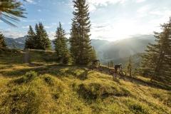 Mountainbike-Tour-rund-um-den-Itonskopf-c-Andreas-Meyer-WOM-Medien-4