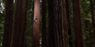 Boomklimmen tot 122 meter hoogte © Keith Ladzinski, Red Bull Content Pool