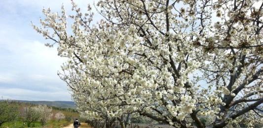 De nieuwe Sufi Trail wandelen in Turkije