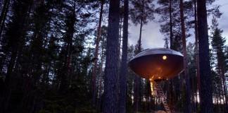 De mooiste boomhut van Zweden