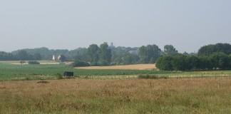 Te voet naar Scherpenheuvel (c) Jo Thuys