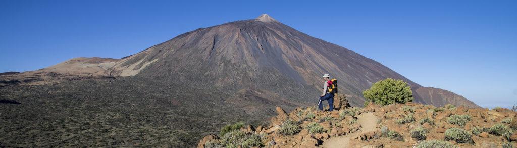 Wandelen op Tenerife - deporte_senderismo_36.-Alto-de-la-Fortaleza_-parque-nacional-teide_volcanes__NDR7028