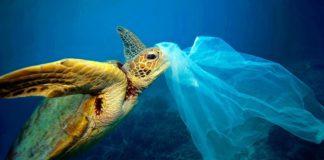 Docu A Plastic Ocean