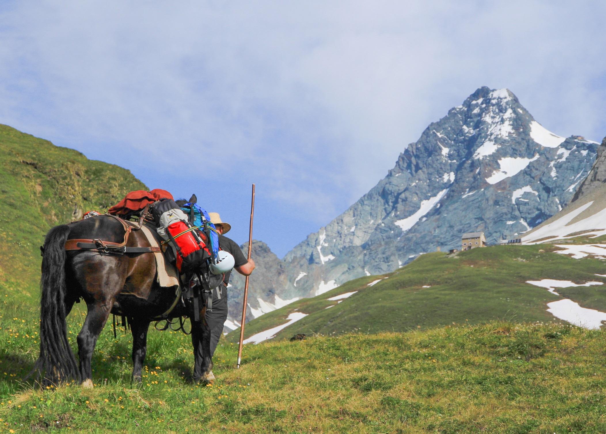 Klettersteigen Oostenrijk : Klettersteigen in oost tirool genieten tussen de drieduizenders