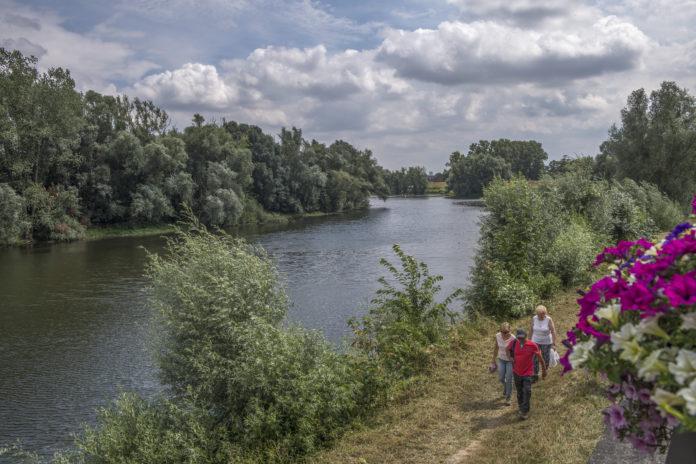 Maasfietsroute van Maastricht naar Maaseik