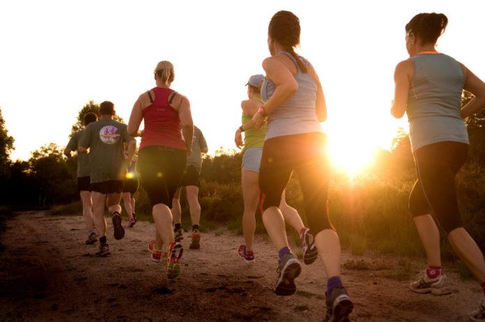 Safari-joggen op de Veluwe- hardloopsafari