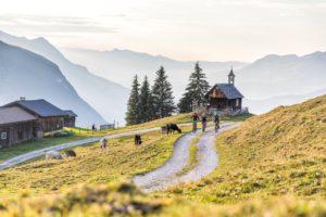 Mountainbike-Tour rund um den Itonskopf (c) Andreas Meyer - WOM Medien (9)