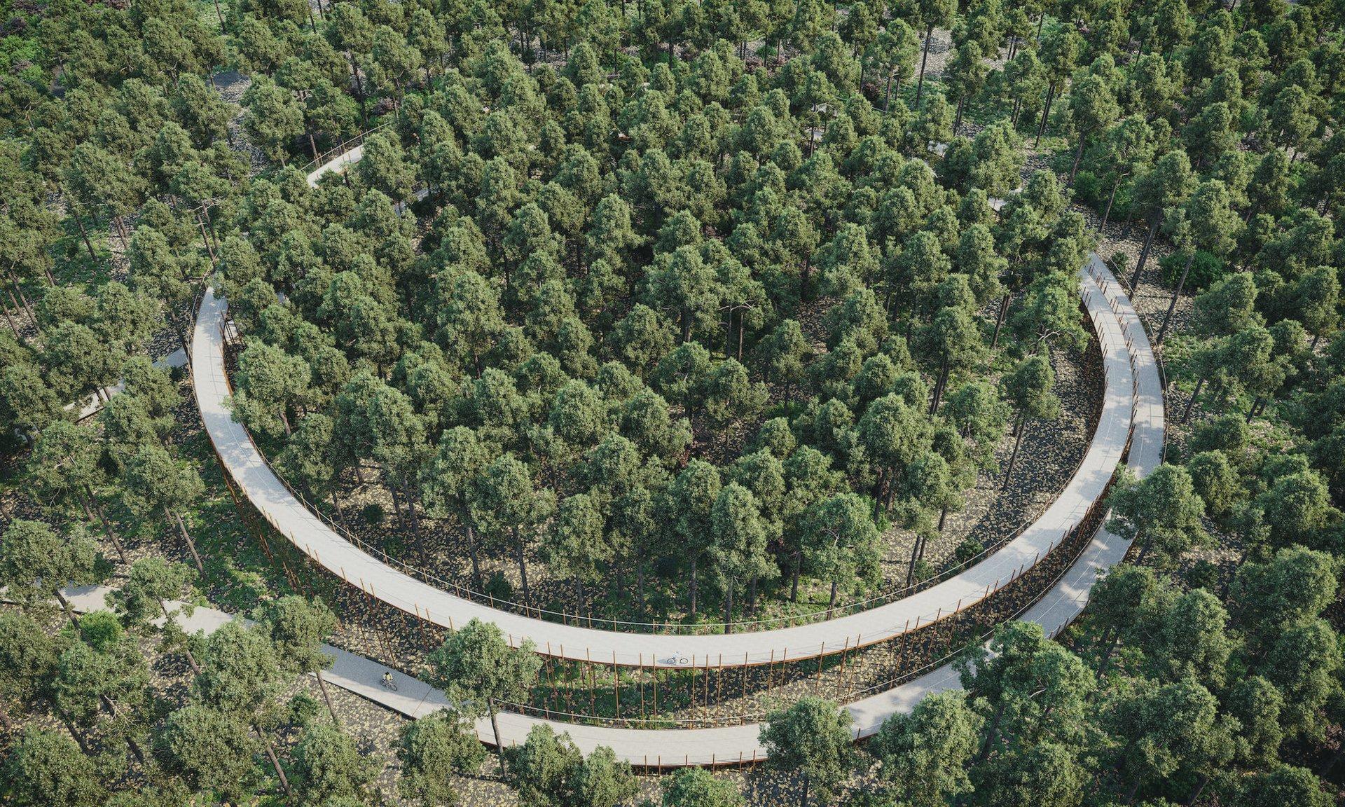 Fietsbrug Fietsen door de Bomen Bosland Limburg