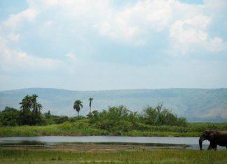 Gravelbiken in Rwanda