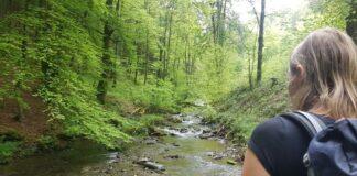 Wildernistrail wandelen in de Duitse Eifel