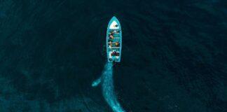 Drone Awards levert weer prachtige plaatjes op