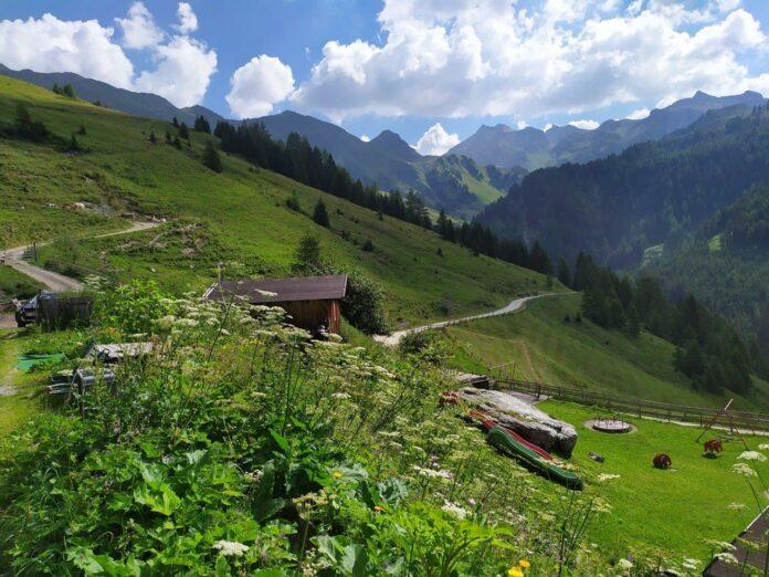 Werkvakantie op een bergboerderij in Tirol