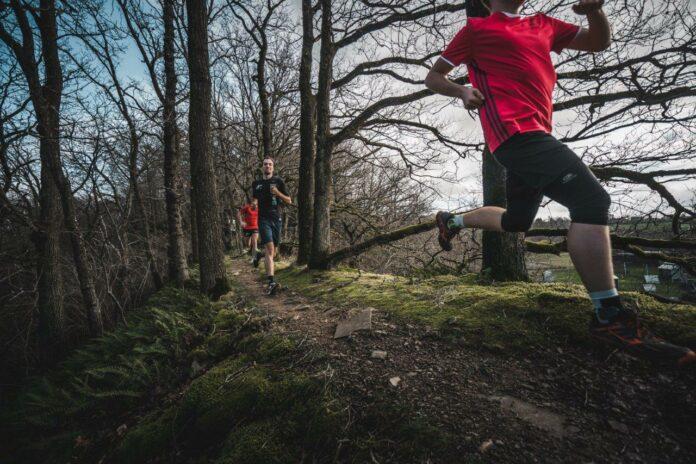 Trailrunnen door de bossen in Wallonië
